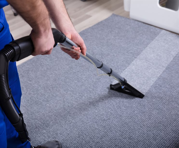 Carpet Cleaning Mornington Peninsula